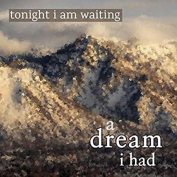 a dream i had