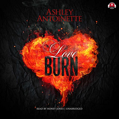 Love Burn audiobook cover art