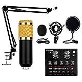 YOBDDD USB Mikrofon Professionell BM-800 Studio Tisch Mikrofon Für PC Gaming Mikrofon Mit Arm...