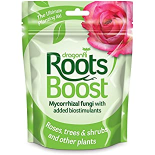 Dragonfli Root Grow Mycorrhizal Fungi Granules 500 grams