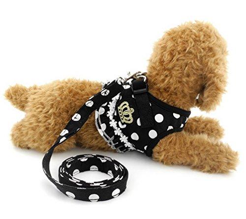 Ranphy Kleine Hunde Hundegeschirr mit Leine Polka Punkt Brustgeschirr Verstellbare Haustier Geschirr für Katze Schwarz Größe M