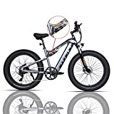 PASELEC Electric Bikes for Adult, Electric Mountain Bike, 4.0 Fat Tire E-Bike with 48V 14.5ah Lithium Battery, 750W Motor,9 Gear Full-Suspension E-MTB (Gray, 14.5AH Battery)