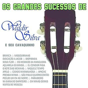 Os Grandes Sucessos de Waldir Silva