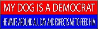 10x3 Patriotic Bumper Sticker Auto Decal Conservative Republican USA Flag American Patriot (Dog)