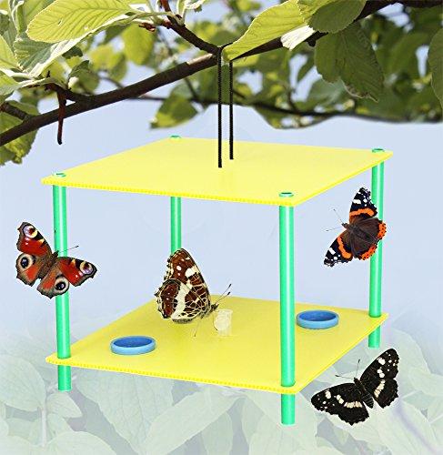 GreenaTM Mangeoire à Papillon-attirer les Papillons à votre jardin !