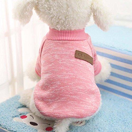 Handfly Klassisch Strickwolle Hundepullover Hundemantel Hundejacke Hunde Weste Winter Herbst warme Hundebekleidung für Kleine und Mittlere Hunde Teddy Chihuahua Shiba Dachshund Bulldog XS S M L XL XXL