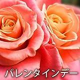 バレンタインデー ・ ピアノ ジャズ音楽, レストラン BGM