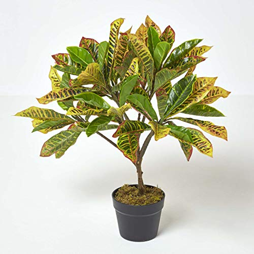 Homescapes Croton vert plante verte et jaune artificielle en pot, 65 cm
