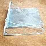 Nienyu Cubierta de Planta Resistente con Ojales, 0.3 mm Lona de PVC Transparente Impermeable, Toldo Suave Antienvejecimiento, para Pesca, Camping, Jardín. 2mx4m