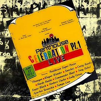 Penthouse Celebration Pt. 1: Live At 56 Slipe Road, Kingston, Jamaica - Continuous Mix