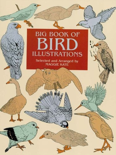 Big Book of Bird Illustrations (Dover Pictorial Archive) (English Edition)