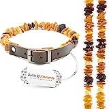 Baltic Elements Bernsteinhalsband Hunde, Bernsteinkette Hund