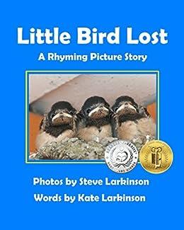 Little Bird Lost: A Rhyming Picture Story by [Steve Larkinson, Kate Larkinson]