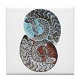 CafePress Dessous de Verre Ammonite Ying et Yang