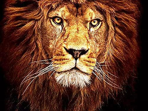 QRKJ 1500 Piezas de Rompecabezas de Madera para Adultos, león, Mejor cumpleaños para Hombres, Mujeres, mamá, papá para Ella, él, Cada Pieza es única y Encaja Perfectamente