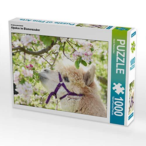 CALVENDO Puzzle Alpakas im Blumenzauber 1000 Teile Lege-Größe 64 x 48 cm Foto-Puzzle Bild von Heidi Rentschler