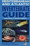 Mediterranean and Atlantic Invertebrate Guide - From Spain to Turkey, from Norway to the Equator