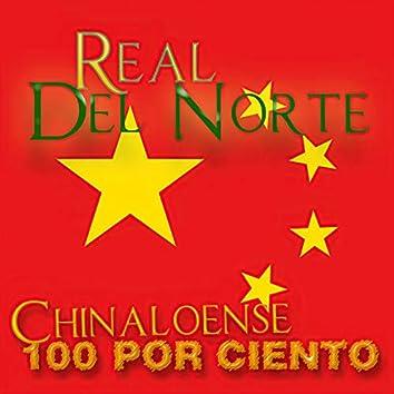 Chinaloense 100%