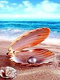 Kits de pintura de diamantes para adultos – Carcasa redonda con perla de diamante para decoración de pared del hogar – Pintura de gemas para relajación