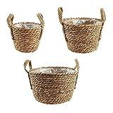 ZCFGUOI Juego de 3 macetas de pastas marinas para interiores y exteriores, cesta tejida a mano con forro de plástico impermeable para flores y plantas