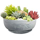 Succulent Pots with Drainage Tray, Farielyn-X 8'' Marble Pattern Large Round Succulent Planter Pot, Ceramic Shallow Flower Pot Succulent/Cactus Planter Set for Indoor/Outdoor Plants