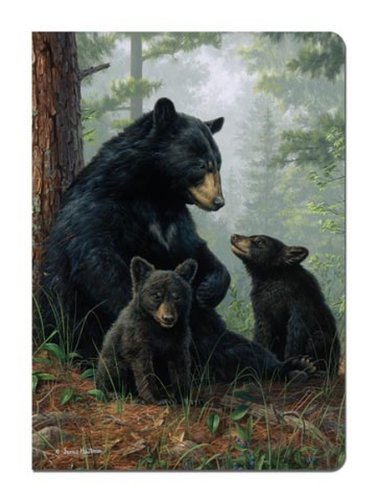 Tree-Free Greetings Journal, 160 Ruled Pages, Recycled, 5.5 x 7.5 Inches, Bear Family, Multi Color (72051)