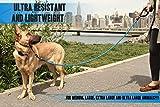 GOMA Starke Kaufeste Reflektierende Hunde Trainingsleine / Hundeleine – 100% Nylon - 6