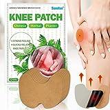 Unguento Para el Dolor, Pain Relief Patches, Parches de Calor, Parches Alivio del Dolor, Promueven la Circulación Sanguínea Alivia la Inflamación Músculos Articulaciones Alivio Del Dolor (Knee)