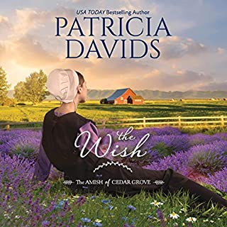 The Wish audiobook cover art