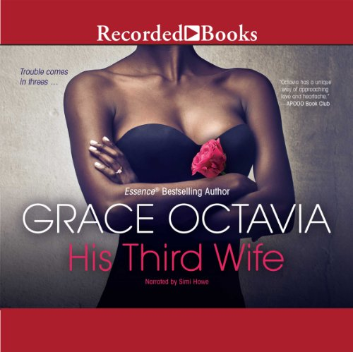His Third Wife audiobook cover art