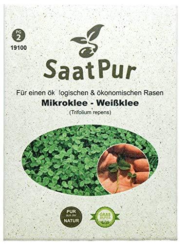 Mikroklee Microclover Miniklee Zwergklee Microklee Saatgut für gleichmäßigen dichten ganzjaehrig grünen Rasen - kleinblaettriger Klee Samen - Rasenklee kleiner Weißklee, 50 g für ca. 25 qm