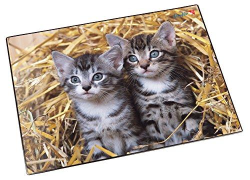 Läufer 46637 Schreibtischunterlage Katzen im Stroh, 53x40 cm, rutschfeste Schreibunterlage für Kinder, verschiedene Motive, mit transparenter Seitentasche