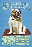 NWFS Englische Bulldogge Blechschild Metallschild Schild Metal Tin Sign gewölbt lackiert 20 x 30 cm