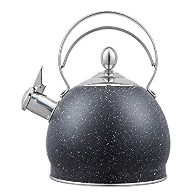 Whistling Tea Kettle Stainless Steel Teapot, Teakettle for Stovetop Induction Stove Top, Fast Boiling Heat Water Tea Pot 2.5 Quart(Black-RW)