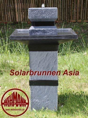 Wehmann Fuente Solar Asia Fuente Solar Salto Zengarten Pozo Completo para Jardín y Terraza Día y Noche!!!: Amazon.es: Hogar