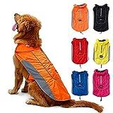 TFENG Reflektierend Hundejacke für Hunde, Wasserdicht Hundemantel Warm gepolstert Puffer Weste Welpen Regenmantel mit Fleece (Größe 2XL, Orange)