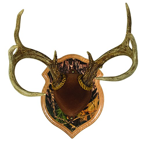 Walnut Hollow Country Deluxe Antler Mount & Display Kit, Oak with Camo