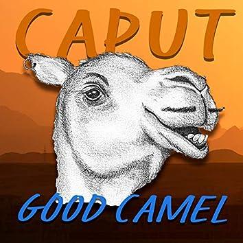 Good Camel