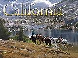 California, Paintings by Tom Hughes 2021 Wall