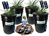The Atwater HydroPod - Standard (4 SITE w/ 8' Baskets) A/C Powered Dual DWC Deep Water Culture & Recirculating Drip Hydroponic Garden System Kit - 5 Gallon Size System