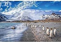 HD 10x7ft氷河写真の背景ペンギンシール海雲南極大陸北極の氷山風景写真冬冷凍世界テーマパーティーの背景写真撮影用ポートレートスタジオの小道具