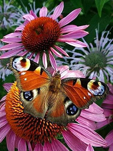 Cuadro de diamantes mariposa 5D taladro cuadrado completo Kit de punto de cruz mosaico bordado flores decoración del hogar A11 40x50cm