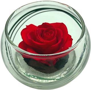 Rose Eternelle - La Vie en Rose - Vase Boule Verre - Rose Stabilisée - Composition Florale (Rouge)
