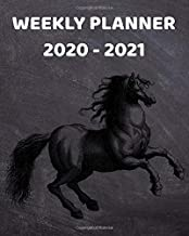 2020-2021 Weekly Planner: 2 Year Weekly & Monthly View Organizer & Agenda with To-Do's | For Horse Lovers