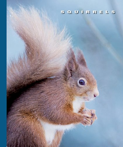 Squirrels (The World of Mammals Book 1244) (English Edition)