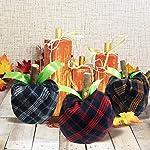 cxwind-halloween-pumpkins-toilet-paper-decorations-6-pcs-fall-thanksgiving-decor-diy-fabric-buffalo-check-pumpkins-artificial-vegetables-for-farmhouse-halloweentoilet-paper-not-included