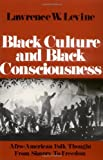 Black Culture and Black Consciousness: Afro-American Folk Thought from Slavery to Freedom (Galaxy Books) (English Edition)