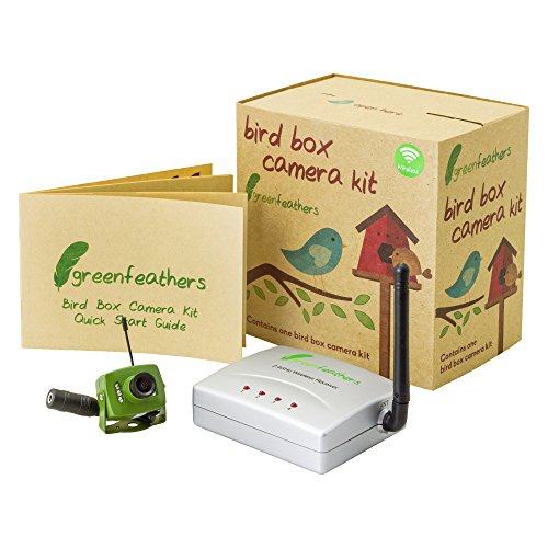 Green Feathers Wireless Bird Box SD 700TVL Camera with Night Vision, Wireless Receiver, Wide Angle Lens - Perfect for your Garden, Nest Boxes, Bird Houses