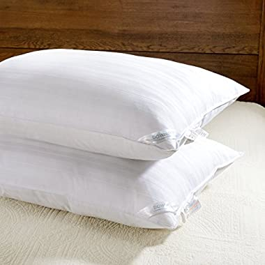 downluxe 2 Pack Luxury Down Alternative Bed Pillows - Premium Plush Pillow with 100% Cotton Pillow Cover,King Size 20x36