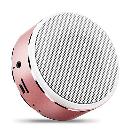 RASHLD Bluetooth Portable Enceinte, Temps de Lecture de 72 Heures dix Mètre Intervalle Haut-Parleur, Renforcée Basse,Rose Gold